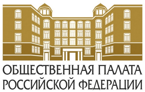 Выборы в Общественную палату РФ
